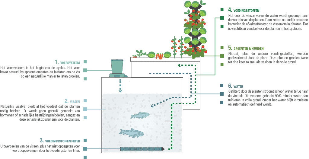 Phood Farm Aquaponics Elementen